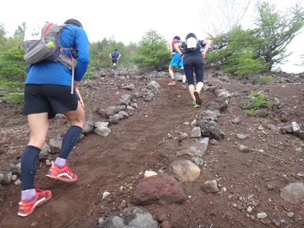石で登山道を作ってくれてた