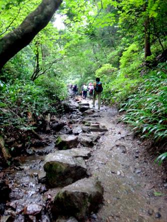 琵琶の滝、ほとんど渋滞なし