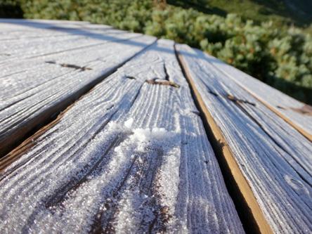 ワタシ今季初の霜を観測