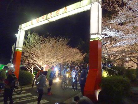 須磨浦公園は花見でライトアップされとる。