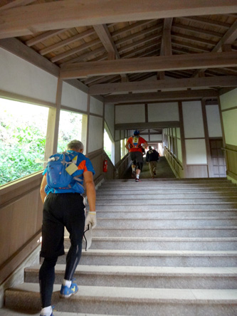 寺の中だからこんな階段も