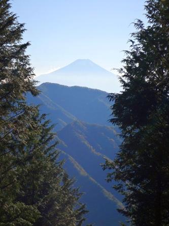 槇寄山からの富士山