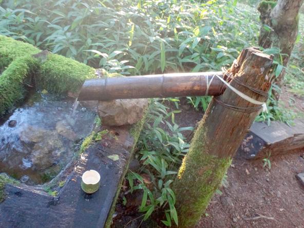 水汲み放題