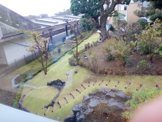 駅の中の庭園が素晴らしい〜