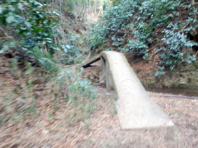 特徴的な狭い橋