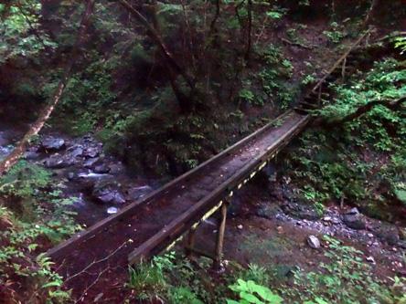 ツルンツルンの橋