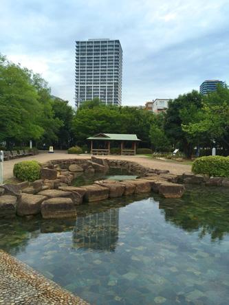 公園の池が綺麗すぎて魚がおらんw