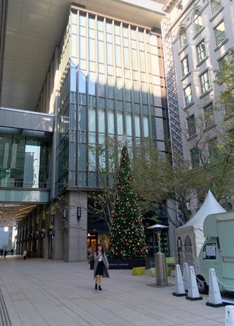 クリスマスツリーがちらほら