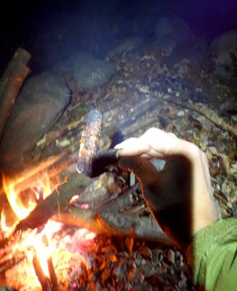 手羽先と焚き火とワタシ