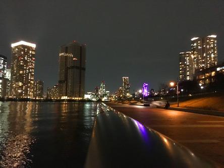 豊洲の夜景もヨシ