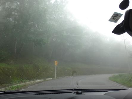 濃霧だけど下に行くと晴れてきた