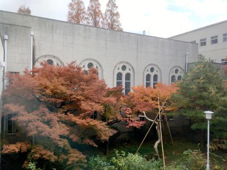 窓からの風景は紅葉のさかり