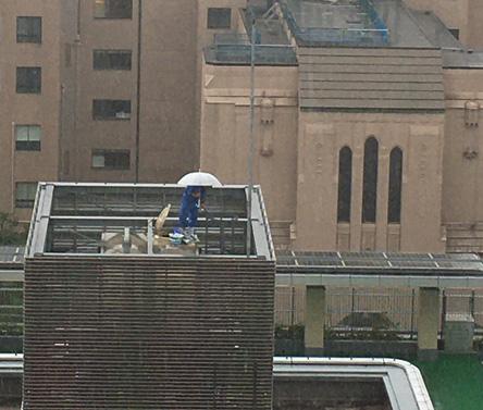 隣の屋上で、水槽を清掃中の人が