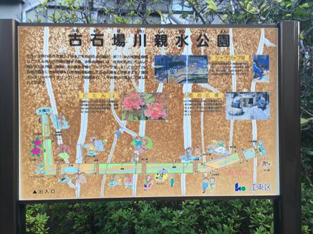 古石場川親水公園、いい感じ