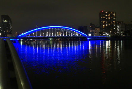 どの橋もライトアップされて綺麗